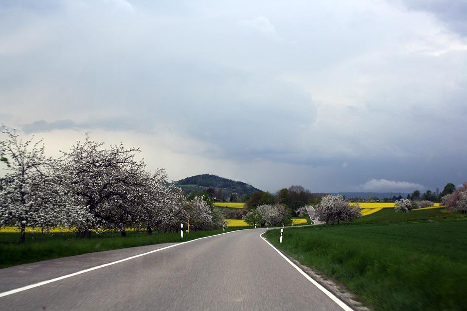 Road, Rapeseed Fields, Spring, Hegau, Landscape, Sky