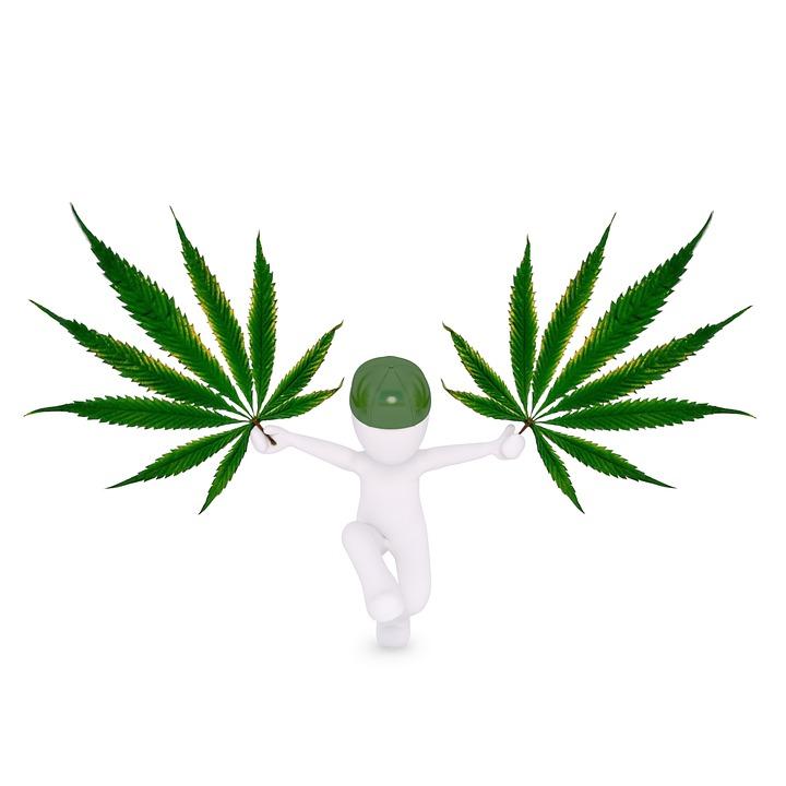 Ganja, Hemp, Mari, Marijuana, Hemp Leaf, Cannabis
