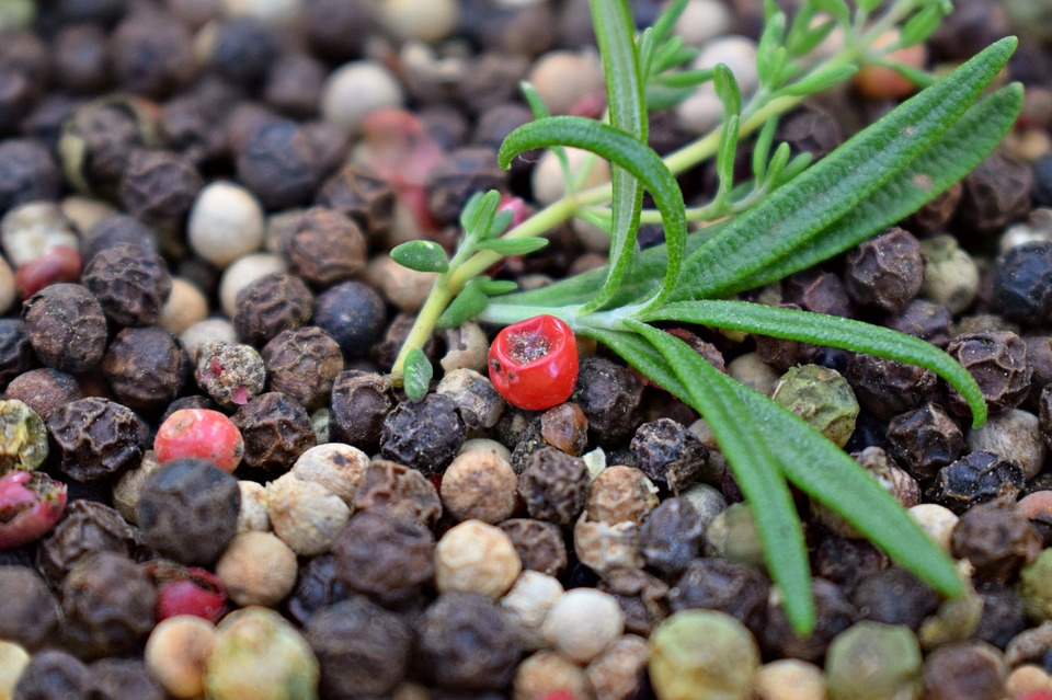 Pepper, Peppercorns, Herbs, Thyme, Rosemary, Spices