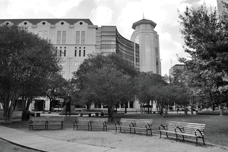 Herman Park, Houston Texas, Benches, Four, 4, Trees