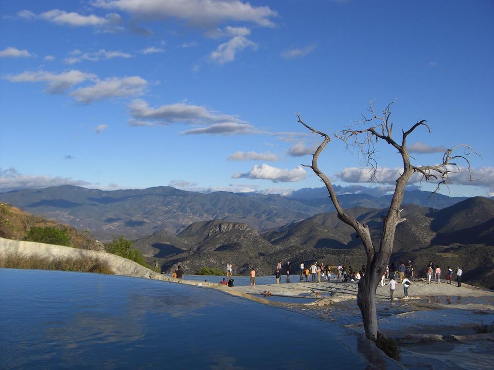 Mexico, Oaxaca, Hiervé El Agua, Tree, Source