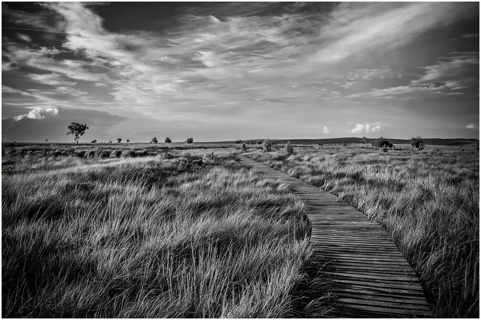 Nature, Landscape, Moor, High Fens, Clouds, Sky, Sunset