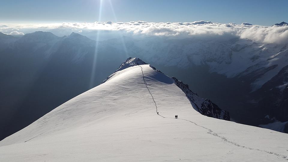 Ortler, High-altitude Mountain Tour, Hintergrat, Alpine