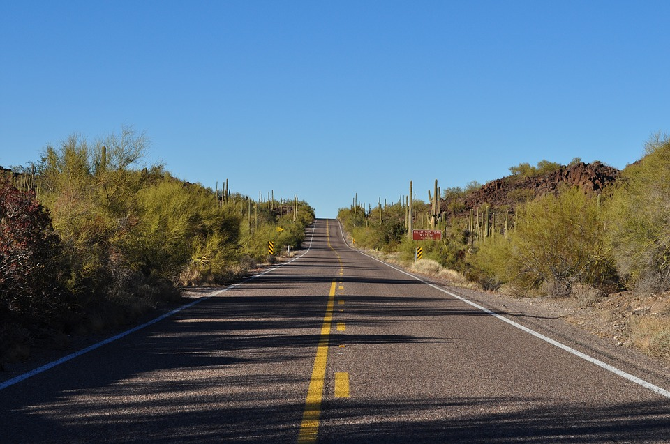 Road, Desert, Cactus, Travel, Highway, Landscape