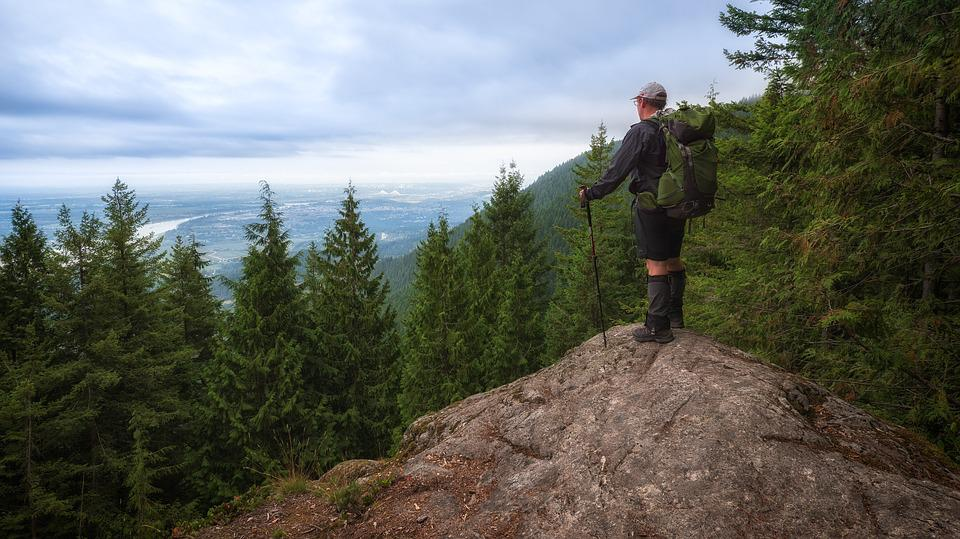 View, Man, Forest, Hiking, Standing, Hiker, Backpack