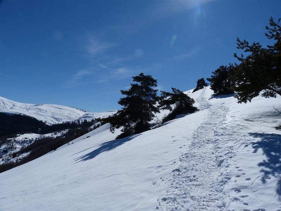 Hiking, Mountain, Winter, Snow, White, Fir, Alps