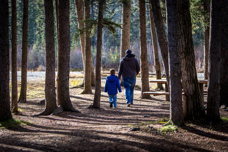 Family, Hiking, Father And Son, Father, Boy, Nature