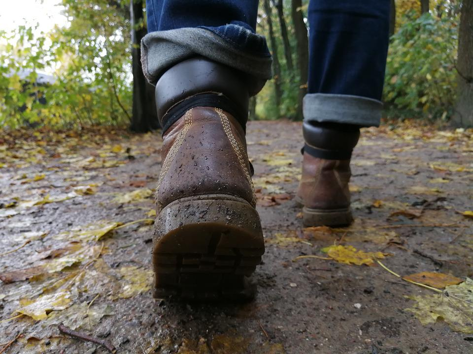 Hiking, Hiking Shoes, Wanderer, Autumn, Leaves, Nature