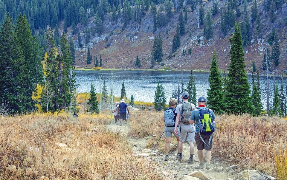 Hiking, Group, Trail, People, Trekking, Hike, Trek