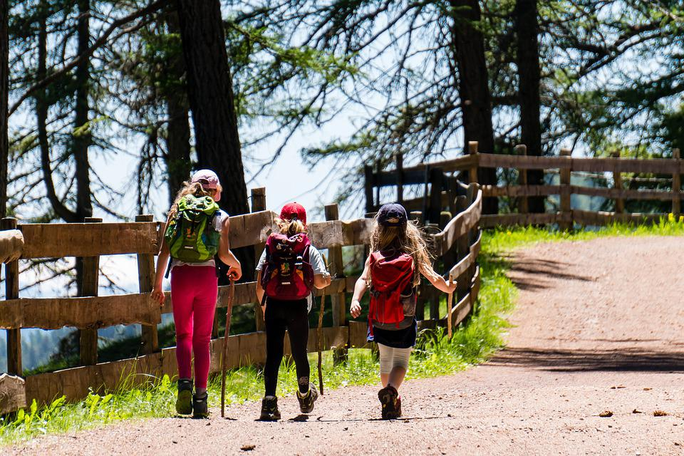 Children, Girl, Hiking, Trail, Forest Road, Three