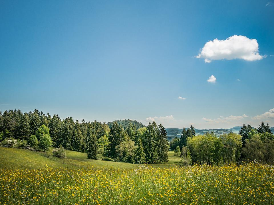 Meadow, Nature, Landscape, Clouds, Sky, Spring, Hill