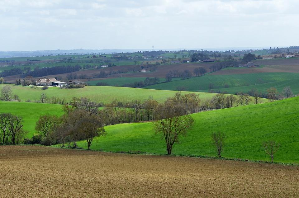 Landscape, Field, Hills, Spring