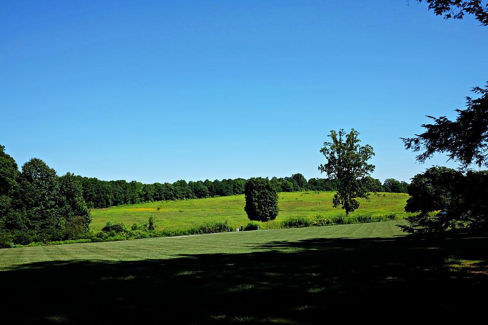 Longwood Gardens, Nature, Green, Trees, Hills
