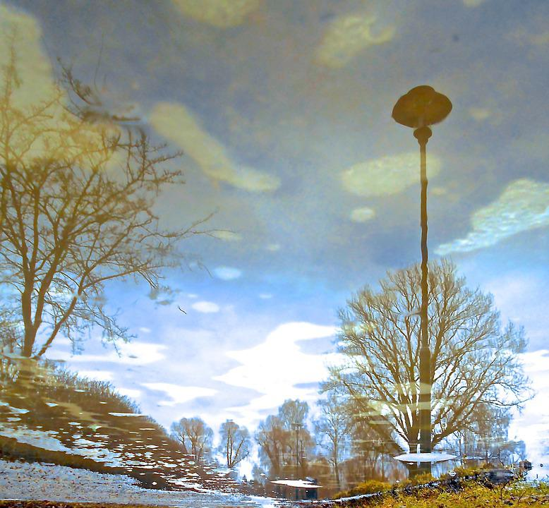 Ice Art, Natural Art, Reflection, Lamp, Tree, Himmel