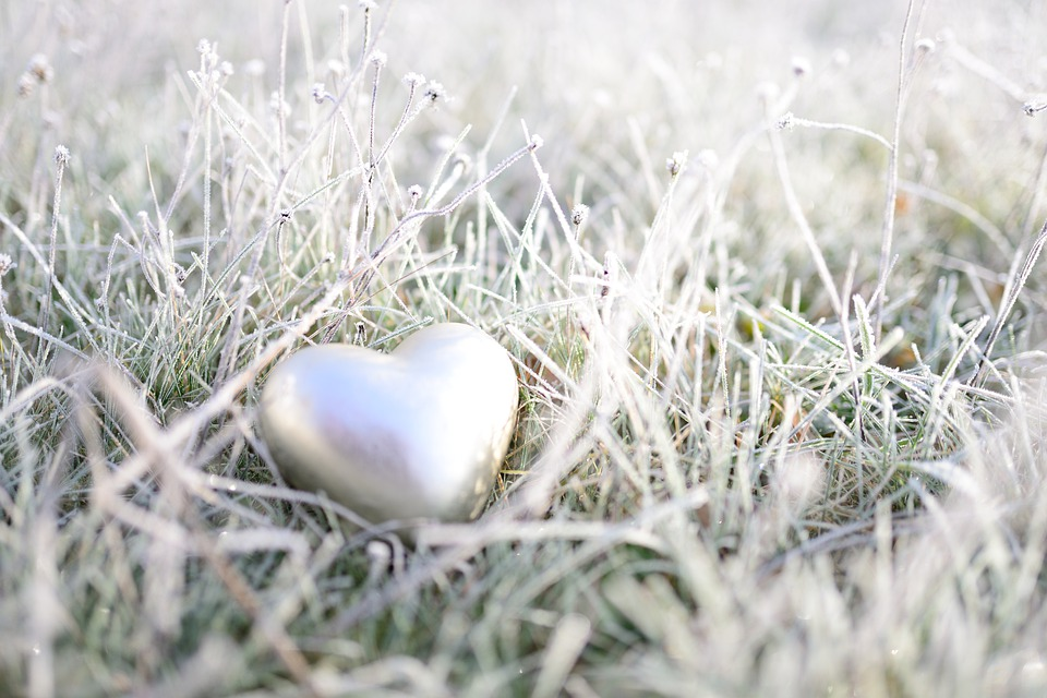 Heart, Meadow, Hoarfrost, Grass, Frost, Frozen, Winter