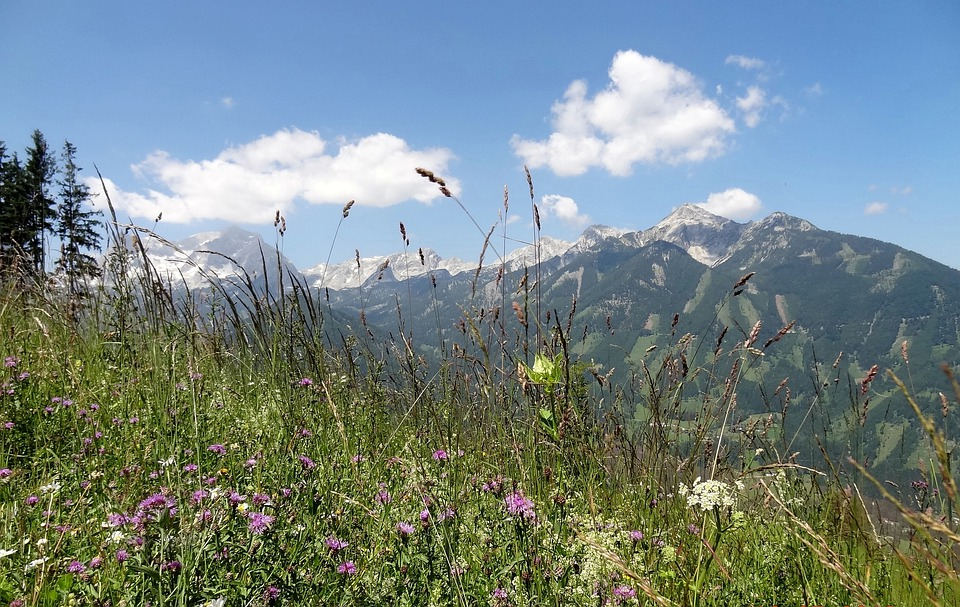 Upper Austria, Höss Panoramastraße, Holiday, Travel