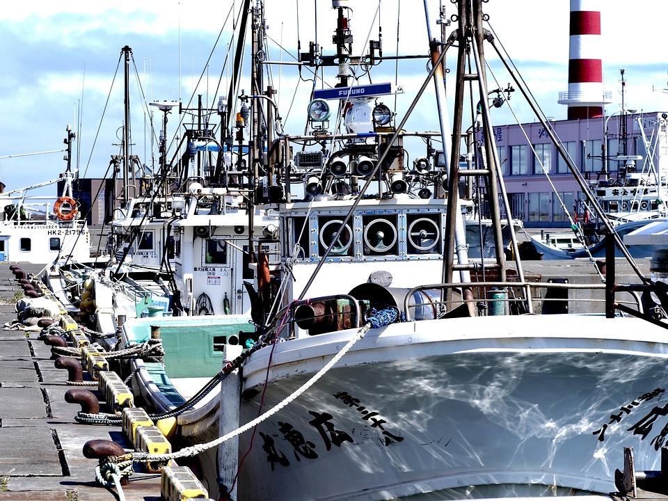 Fishing Boat, Fishing Port, Hokkaido