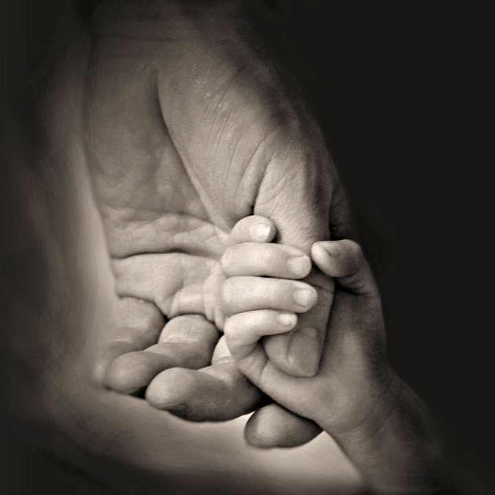 Free Photo Holding Hands Father Daddy Love Daughter Family Max Pixel