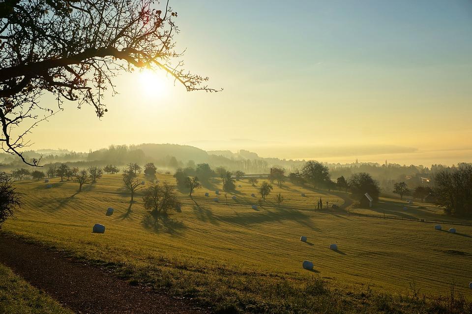 Sunrise, überlingen, Lake Constance, Alpine, Holiday