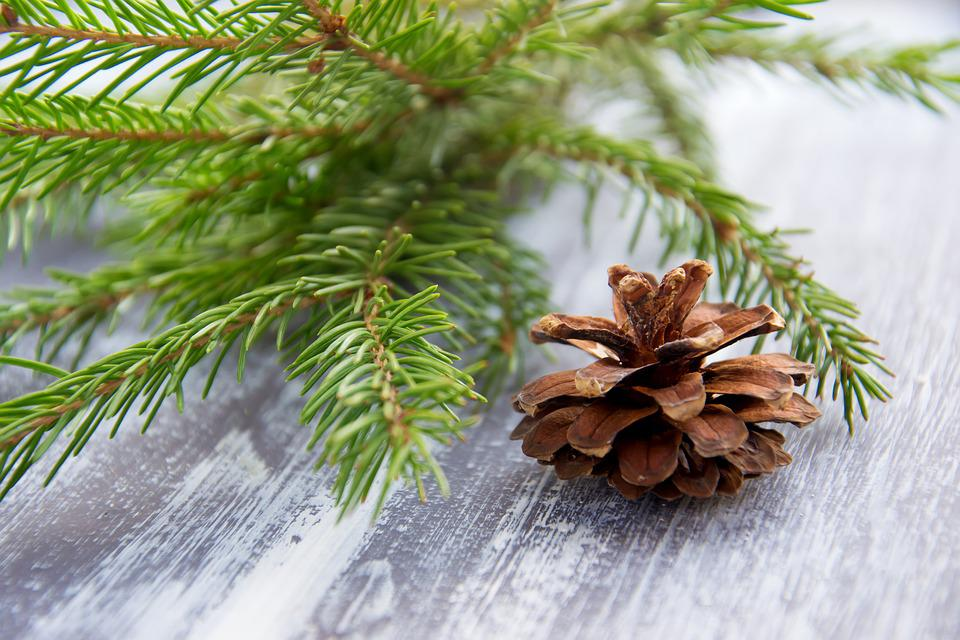 Christmas, New Year's Eve, Holiday, Background