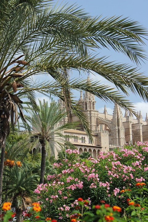 Mallorca, Cathedral, Church, South, Holiday, Travel