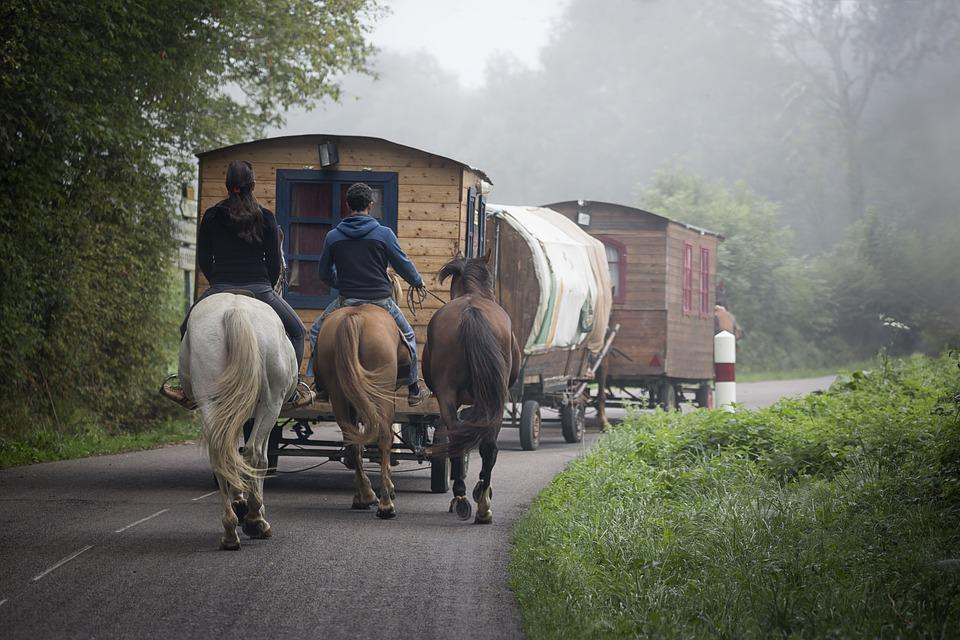 Caravan, Gypsy, Hair, Travel, Bohemia, Horses, Holiday