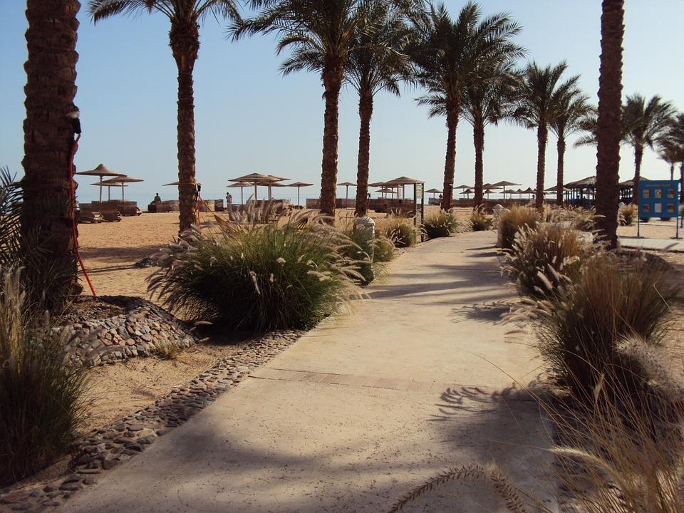 Egypt, Taba, Desert, Swimming Pool, Palm Trees, Holiday