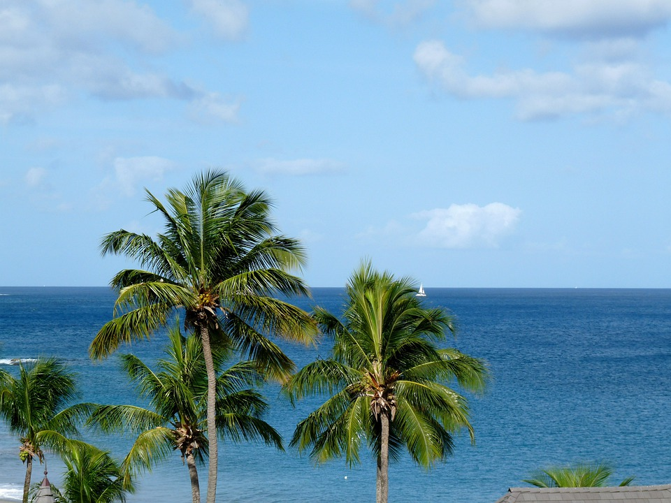 Caribbean, Vacation, Holiday, Ocean, Summer, Travel