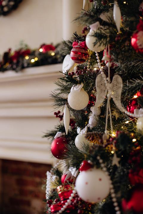 Fur-tree, Christmas, Fur, Cute, Holidays, Tree, Toy