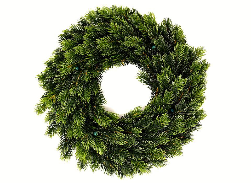 Fir Wreath, Holly, Wreath, Green, Periwinkle