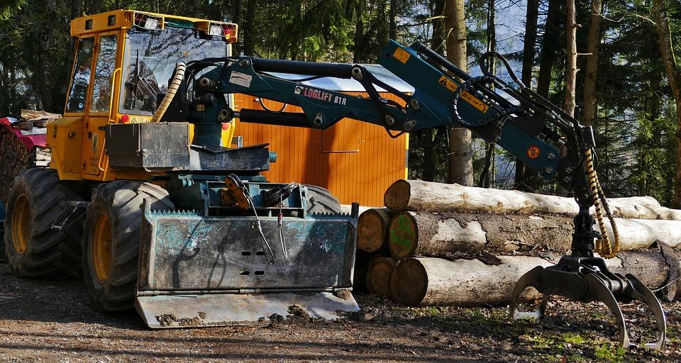 Landscape, Forest, Nature, Forestry Vehicle, Holzernter