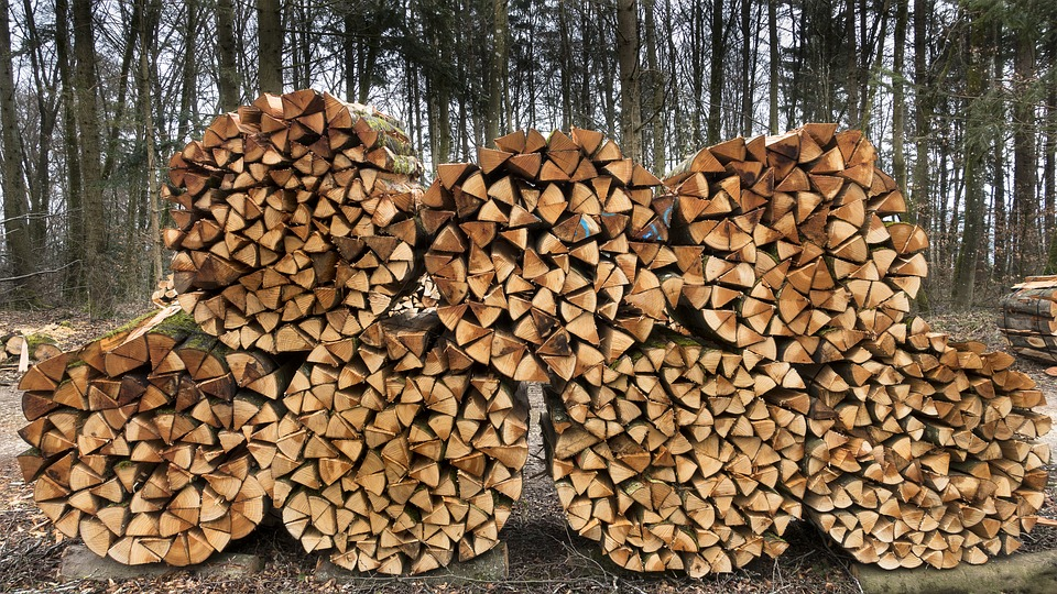 Wood, Firewood, Holzstapel, Stacked Up, Growing Stock