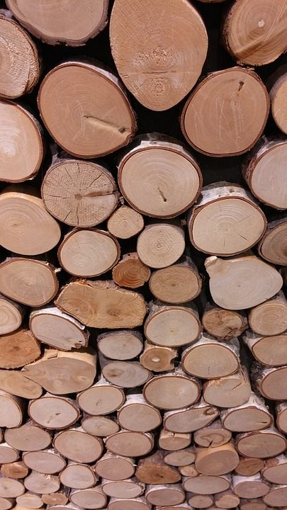 Wood, Holzstapel, Growing Stock, Tree Trunks, Timber
