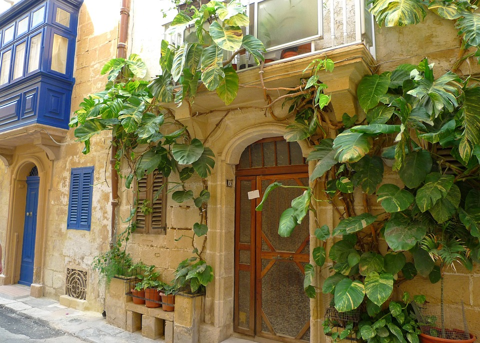 Home Front, Building, Climber, Idyll, Exotic, Malta