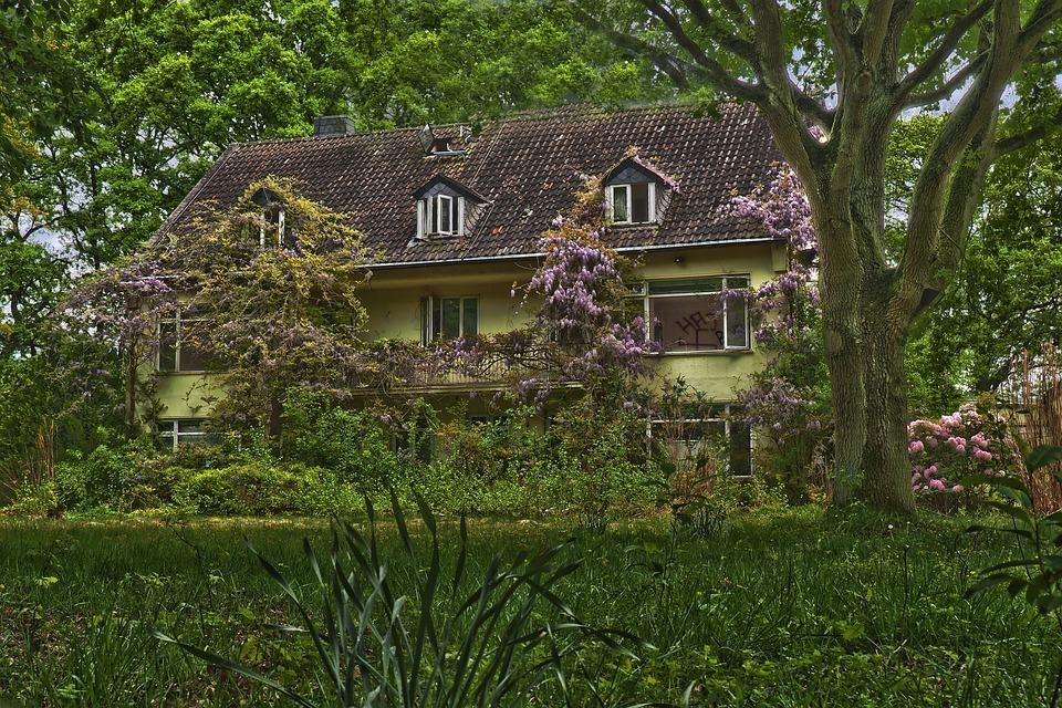 Home, Architecture, Rural, Garden, Nature, Building