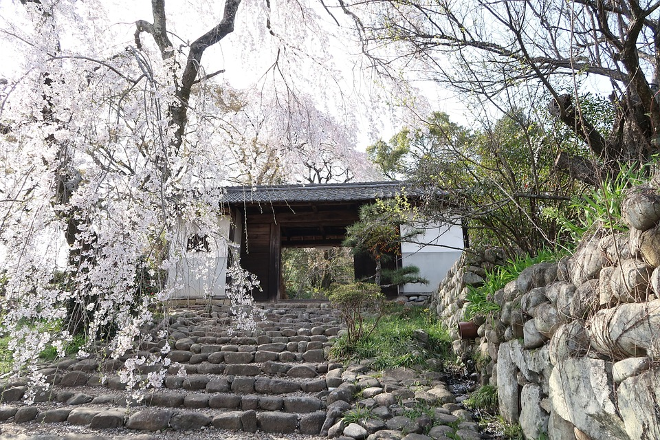 Natural, Wood, Outdoors, Stone, Building, Old, Home