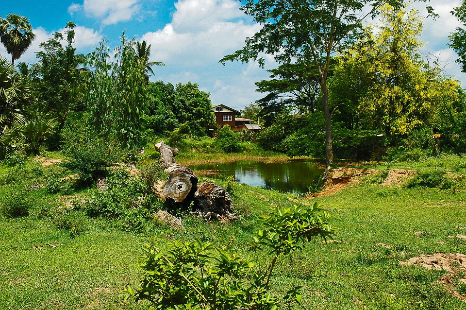 Landscape, Home, Pond, Thailand