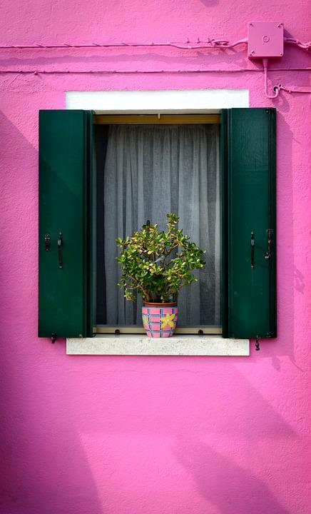 Purple Window, Home, Balcony Plants, Wall, Building