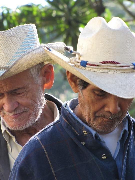 Cowboys, Honduras, Western, Men, People, Old, Elderly