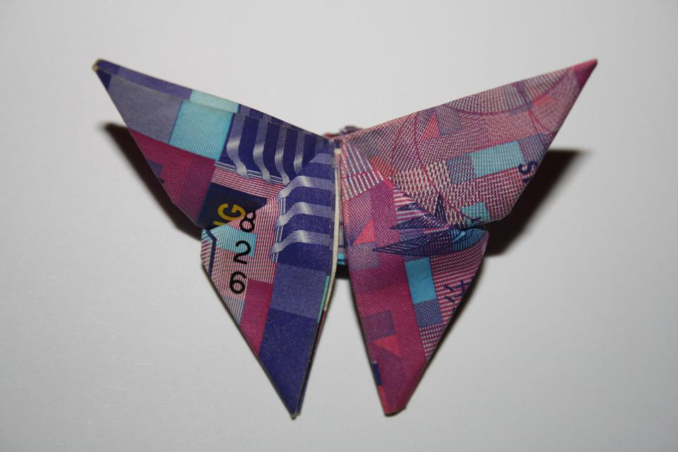Free Photo Hong Kong Dollar Origami Hong Butterfly Kong Max Pixel