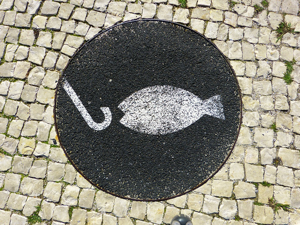 Fish, Fishhook, Mosaic, Hook, Angel, Start