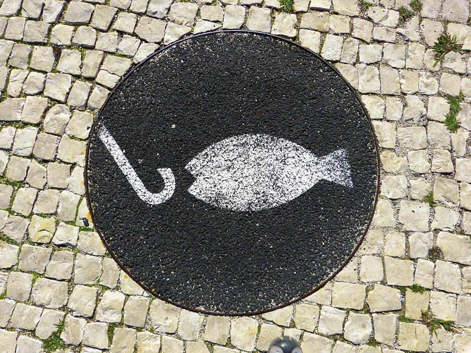 Fish, Fishhook, Mosaic, Hook, Angel, Start