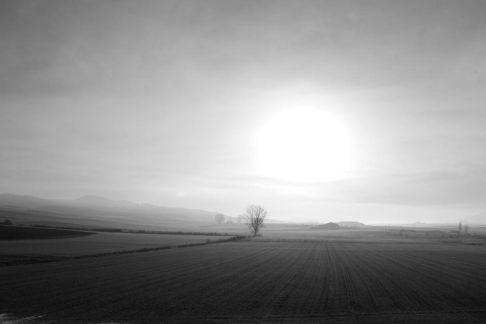 Landscapes, Dawn, Light, Nature, Horizon, Backlight