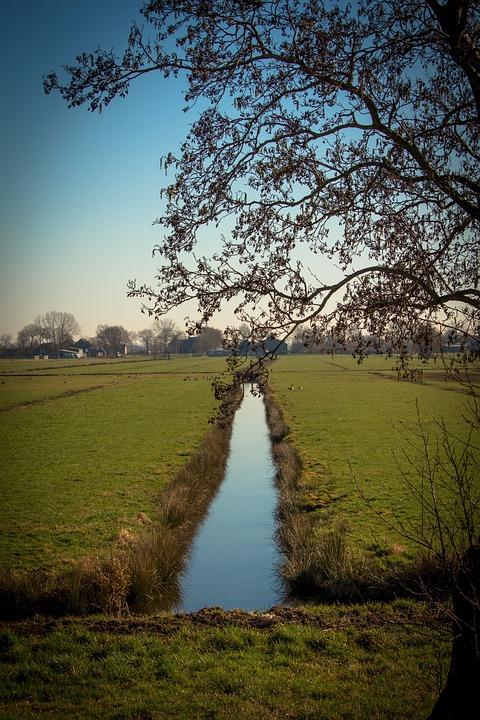 Netherlands, Polder, Pasture, Countryside, Horizon