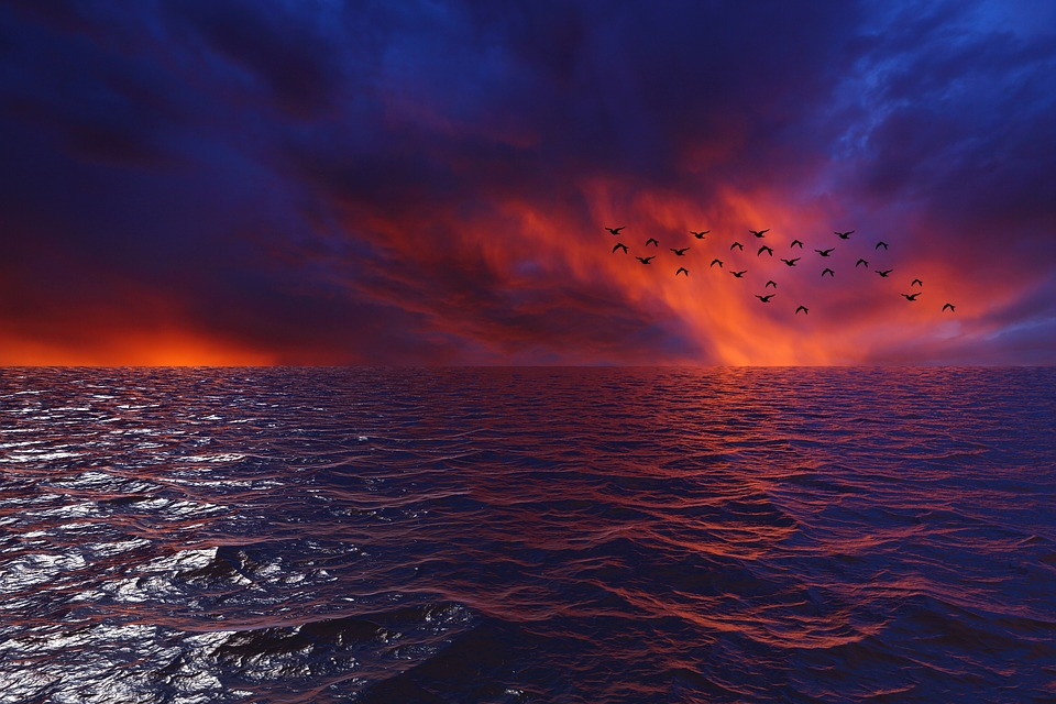 Sunset, Water, Afternoon, Horizon, Waves, Landscape