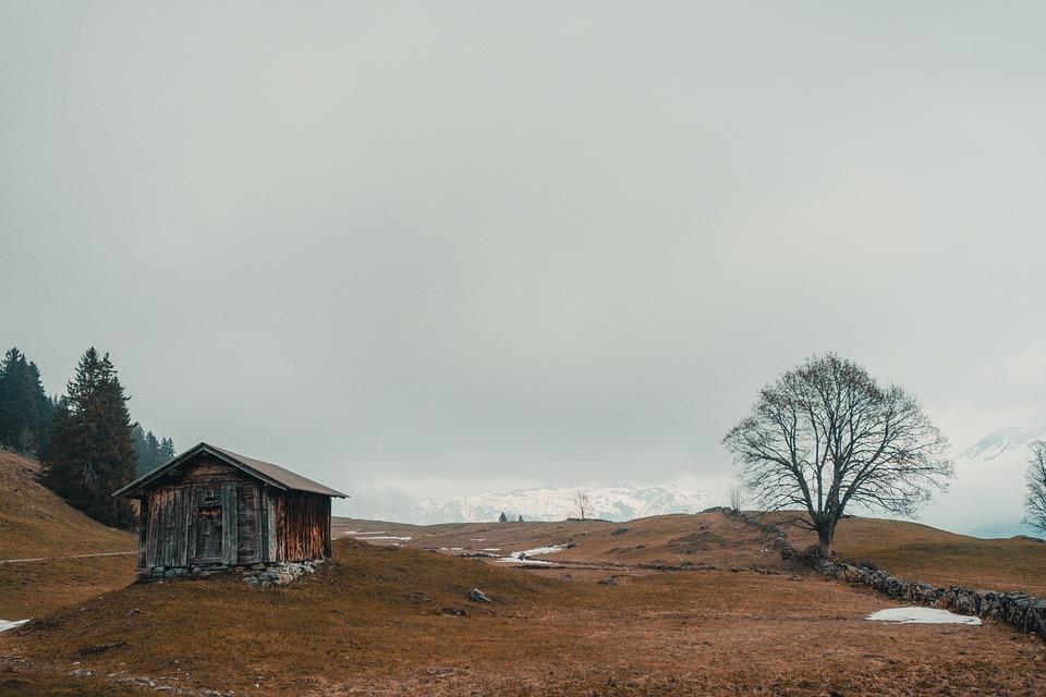 Landscape, Barn, Horizontal Plane, Nature, Tree, Shed