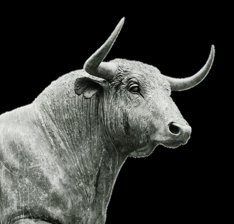 Bull, Horns, Livestock, Ruminant, Agriculture, Cattle