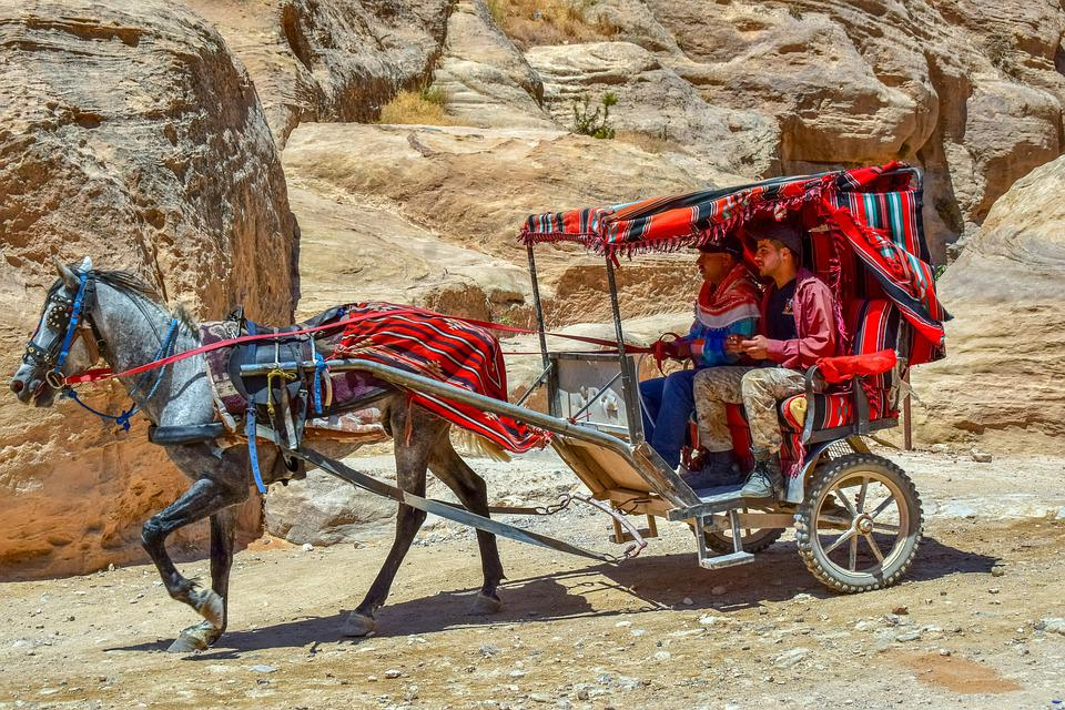 Coach, Carriage, Al Siq Canyon, Horse, Transport, Wagon