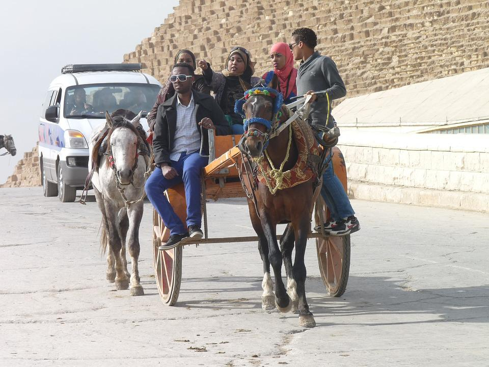 Horse Cart, Egypt, Tourism