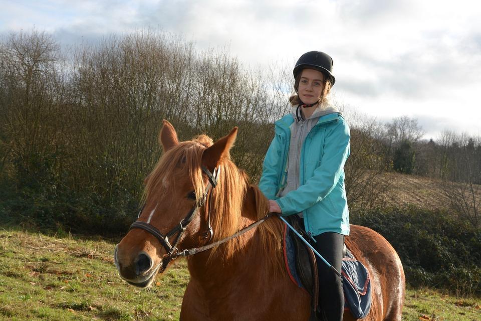 Woman Horse, Cavaliere, Horse, Mare, Horseback Riding